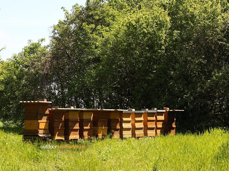 Bienenstöcke bei Heidelberg